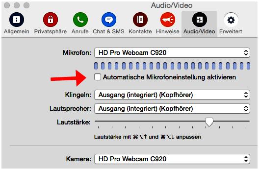Screenshot Audio-Einstellungen für Akkordeon-Unterricht mit skype